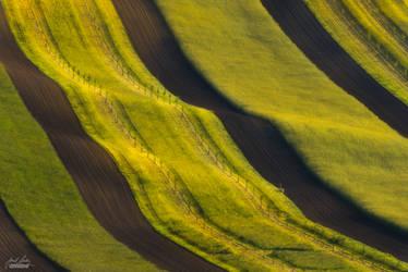 -Ethereal fields- by Janek-Sedlar