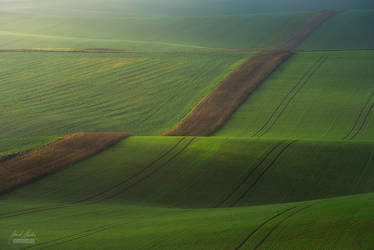 -Beginning of the new day in Moravia- by Janek-Sedlar
