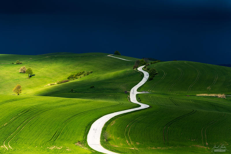 -Path of life- by Janek-Sedlar