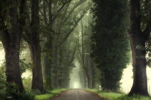 Tunnel of inner calmness