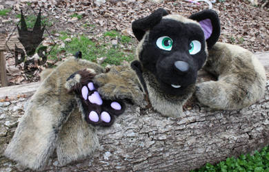 Mocha the Mutt Partial (For Sale)