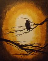 Floof Bird by InsomniaDoodles