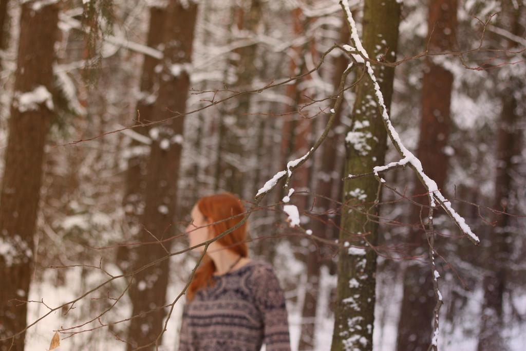 Winter elf_5 by manyared