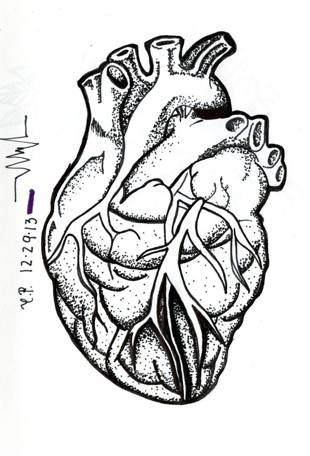 Human Heart by cats-r-fab Human Heart Drawing Black And White