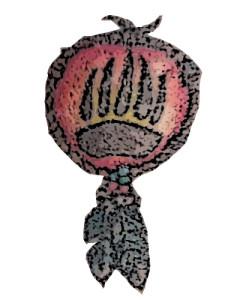 brwnbear's Profile Picture