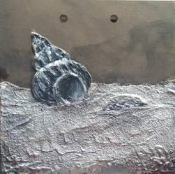 Seafloor shells by Arcedemius
