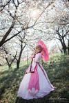 Princess Sakura ~ Tsubasa Reservoir Chronicles