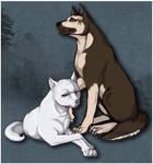 GNG - Akame and John