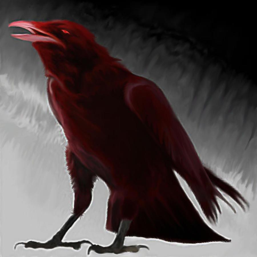 Dark Crow by Dull-Bullet on DeviantArt