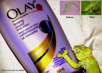 .OlAy. by turtlehandshake