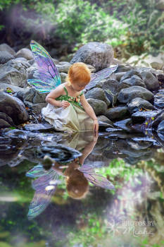 Faerie Reflection