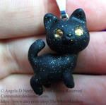 Little black kitty cat