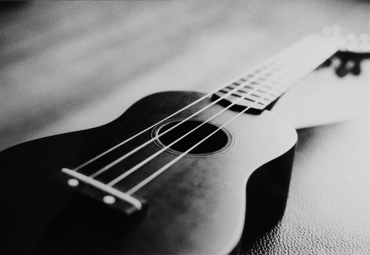 Image result for ukulele photography