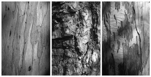 Barks by En-GeL