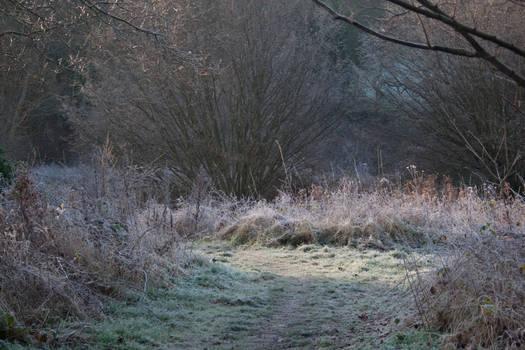 2008: Frozen Path