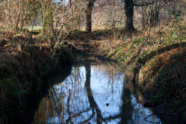 2008: Winter Stream