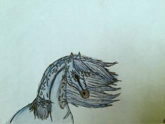 Equbris - Horse od Shadow by DragonShadow2