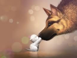 Little cat and big dog