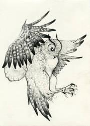 Owl by izabelle-imam