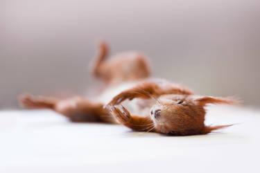 Sleeping by izabelle-imam