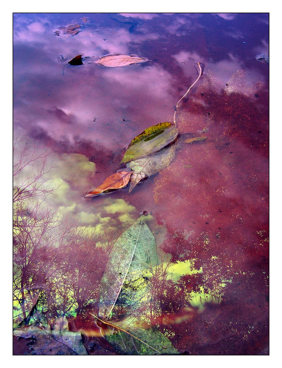 -fall mirror- by fangedfem