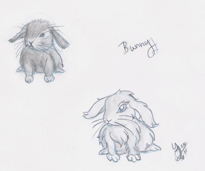 Bunny - Realistic and Cartoony by Yukiko-chan