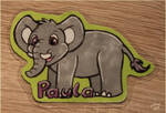 The elephant Paula
