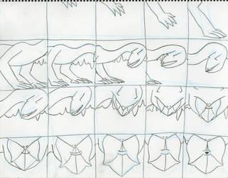 Lizard Light Storyboards one