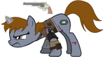 Raider pip