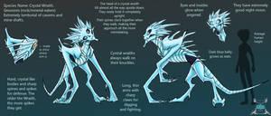 CONCEPT ART: Crystal Wraith