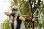 Pointing my arrow fiercely - Rayn