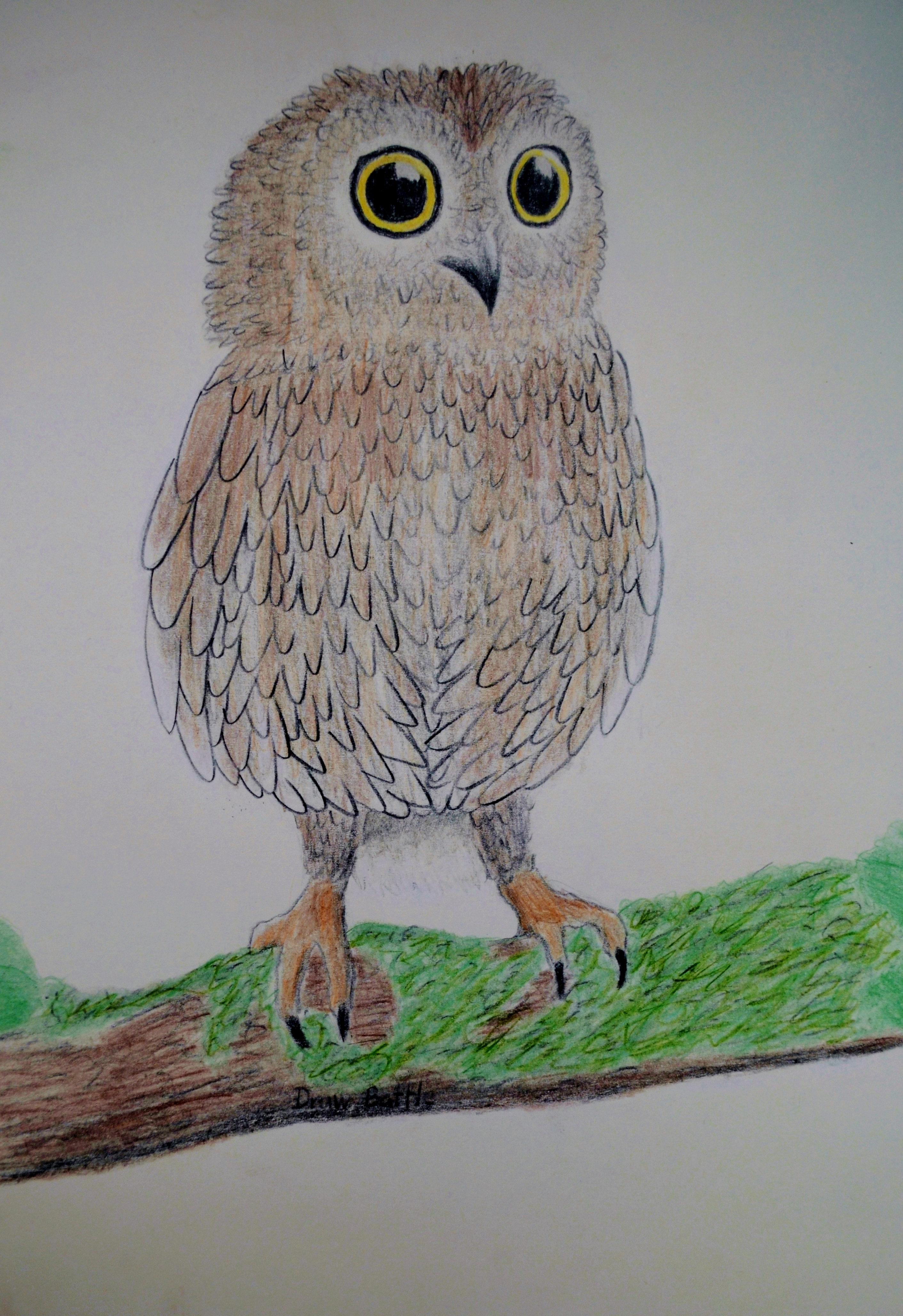 Uncategorized Baby Owl Drawing baby owl drawing by krupping on deviantart krupping