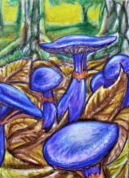 ACEO--Violaceous Cort Mushrooms