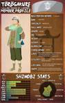 Keigo Aoki- Post Timeskip Profile by Palmtop-Peanut