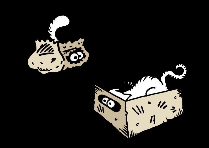 Cat-vs-Cat by aledev