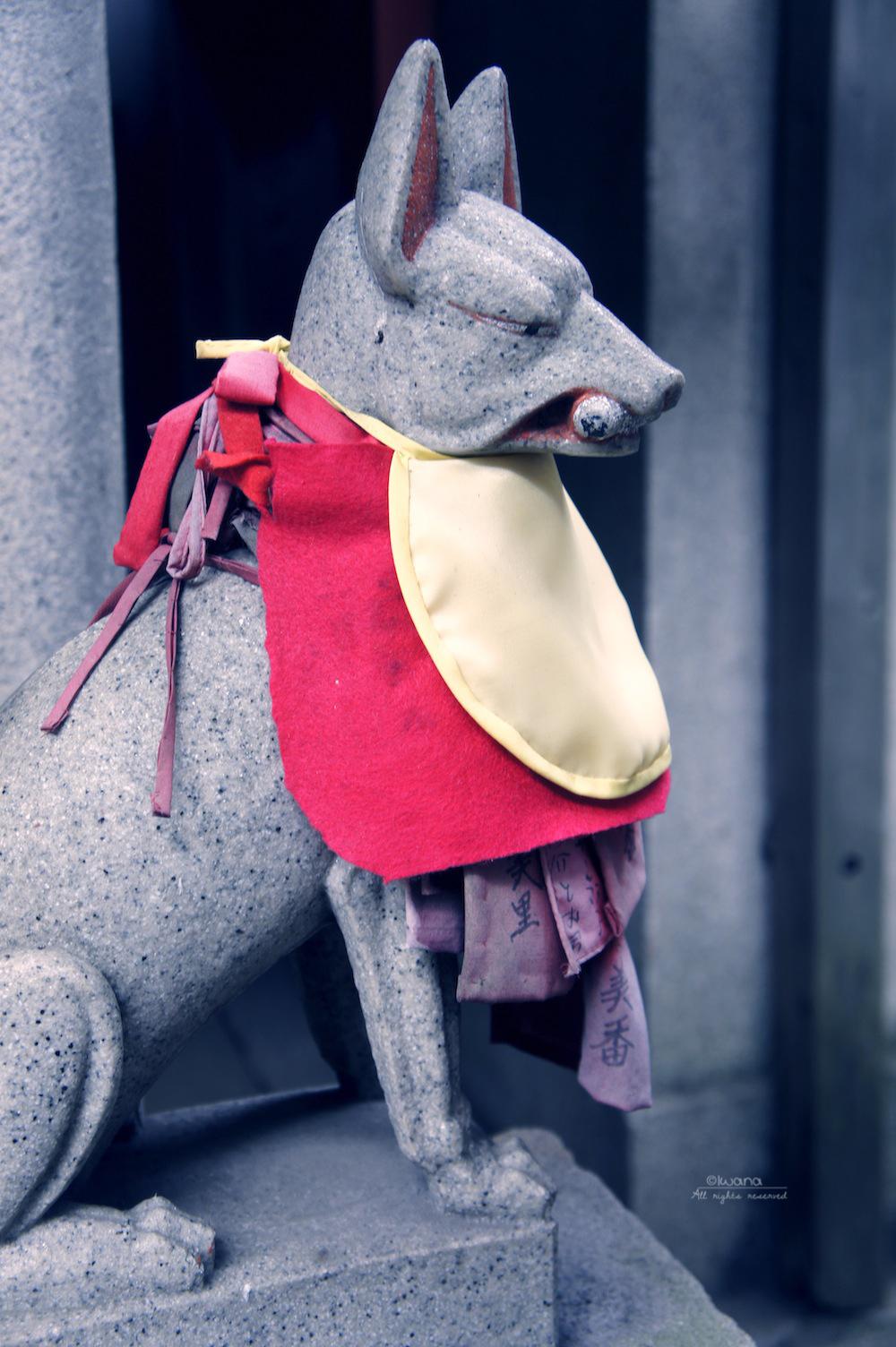 kitsune by iwazakana