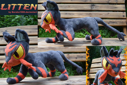 Litten from Pokemon Sun and Moon