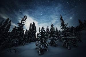 Winter by ajonsaas