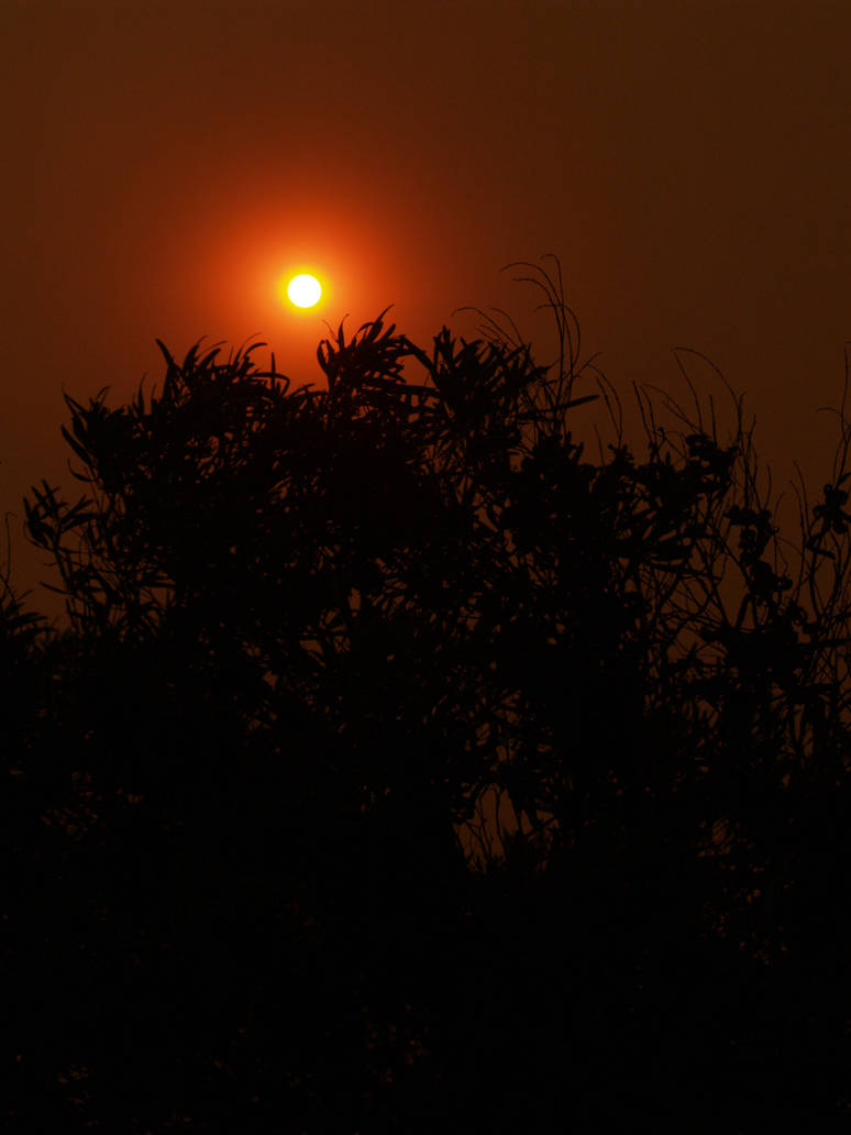 Photography: 2007 Fires - 5