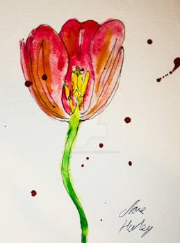 Watercolour Flowers 6