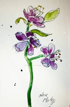 Watercolour Flowers 8