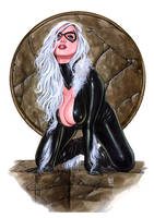 BLACK CAT Nw527 by AlexMirandaArt