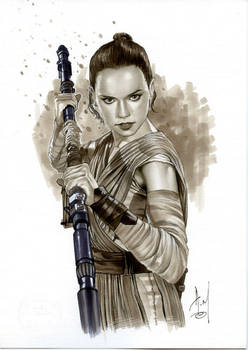 REY - STAR WARS Bw692