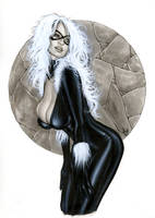 Black Cat Bw710 by AlexMirandaArt