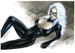 Black Cat Bw717