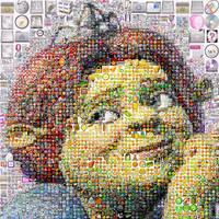 Fiona Mosaic by Cornejo-Sanchez