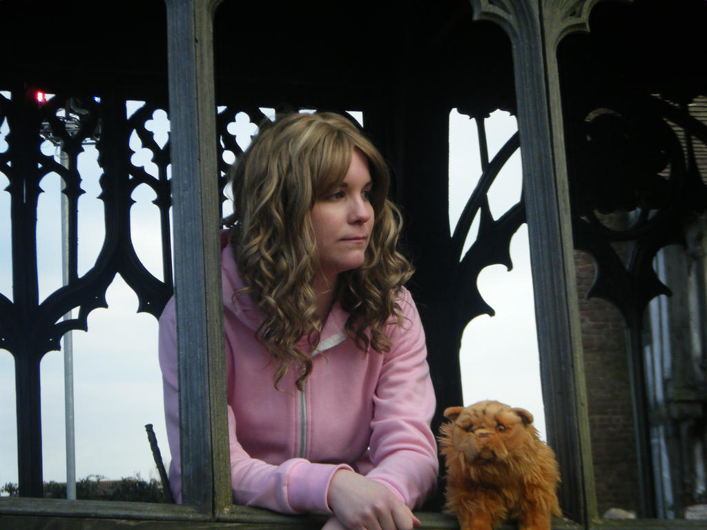 Hermione and Crookshanks | Гарри поттер еда, Гарри поттер