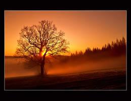 ...sun goes down...