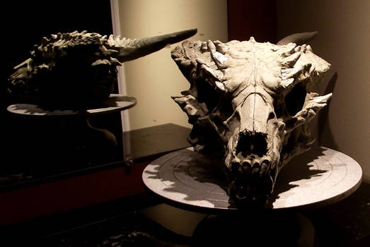 Dragon skull sculpt