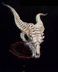 Dragon Skull by NerezaWorks